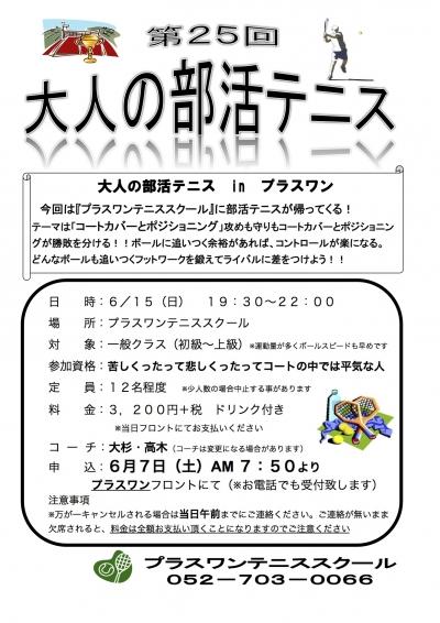 第25回大人の部活テニス 2014年6月 Sheet1