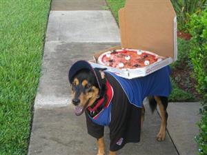 pizzacat_sub1.jpg