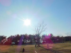 太陽と芝生@若州