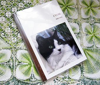 book1_201406172143347e2.jpg