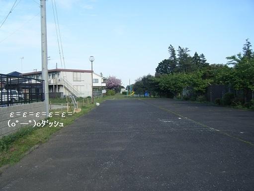DSCF5546.jpg