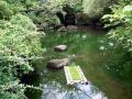 昭和記念公園 024