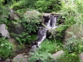 昭和記念公園 029
