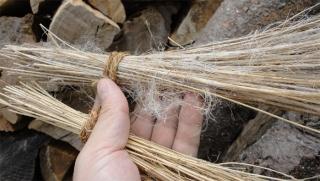 201407 保居てあった宿根亜麻 よくみると繊維が