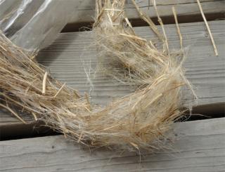 201407 宿根亜麻の繊維を取り出す