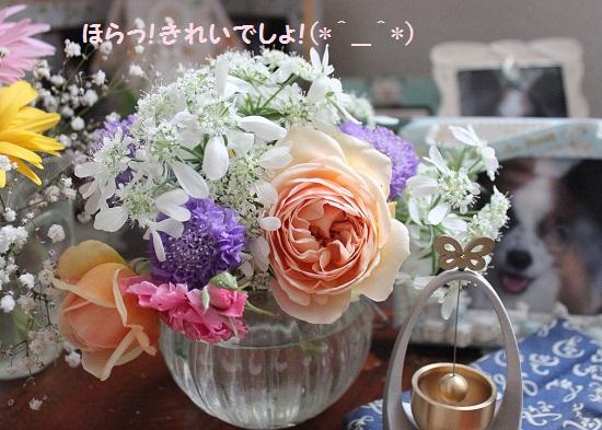 051-2_20140514180314e65.jpg