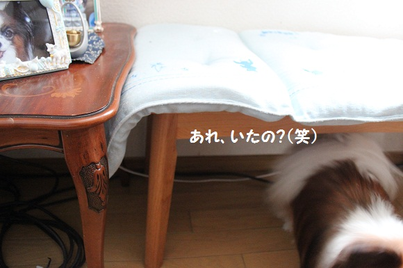052-2_20140804221732c2f.jpg