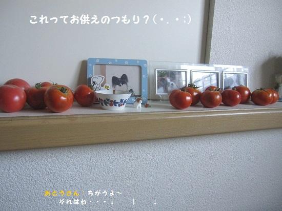 104-4.jpg