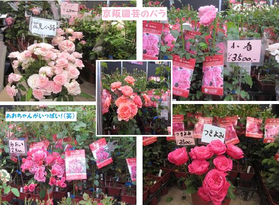 京阪園芸♪