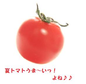 夏トマト!うまいっ!!ヽ(^o^)丿