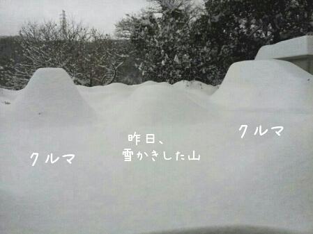 fc2_2014-02-15_17-50-01-987.jpg