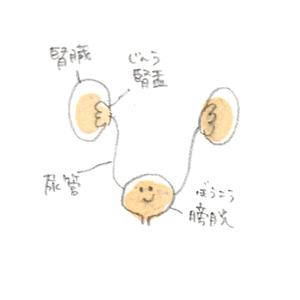 20140628-1.jpg