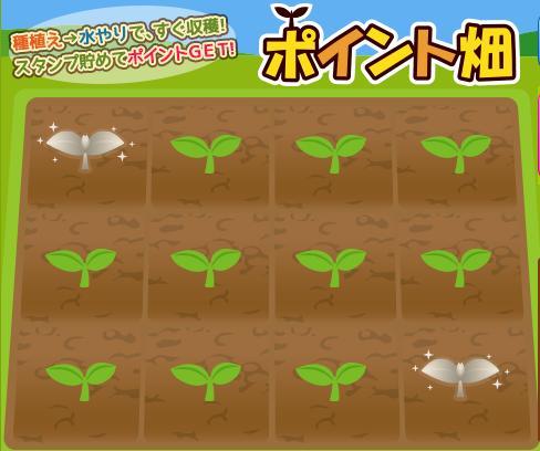モッピーポイント畑1