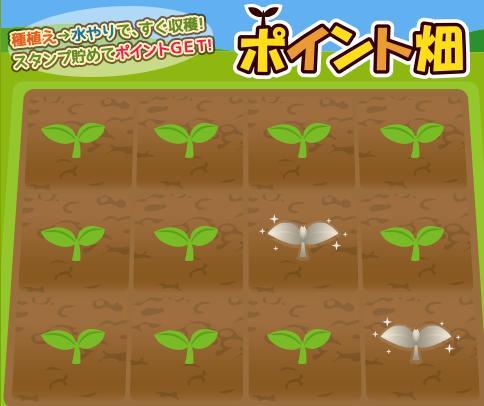 モッピーポイント畑