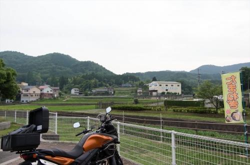 KMGP4093-1_R.jpg