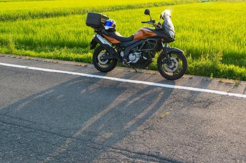 KMGP4746-1_R.jpg