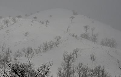 雪景色 3