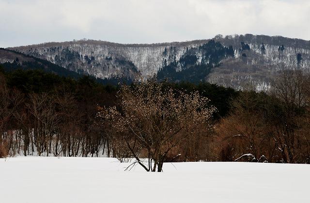 雪景色3月5
