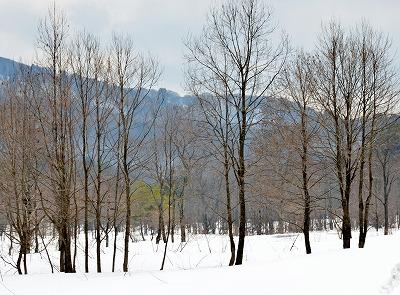 雪景色3月 4