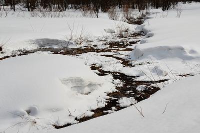 雪景色3月 7