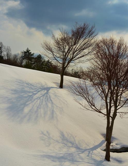 雪景色3月 11