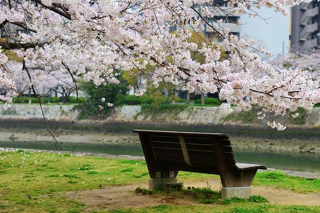 平和公園 14