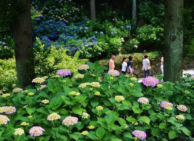 三景園 1