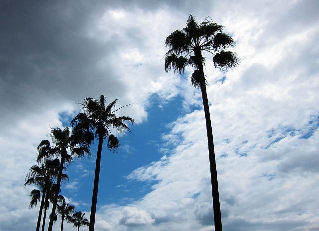 台風8号1