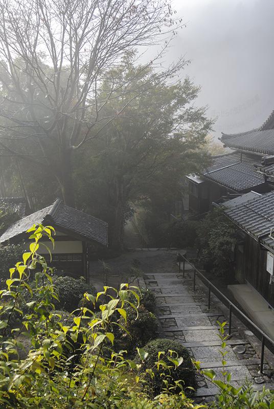 大原西陵への路:2013秋