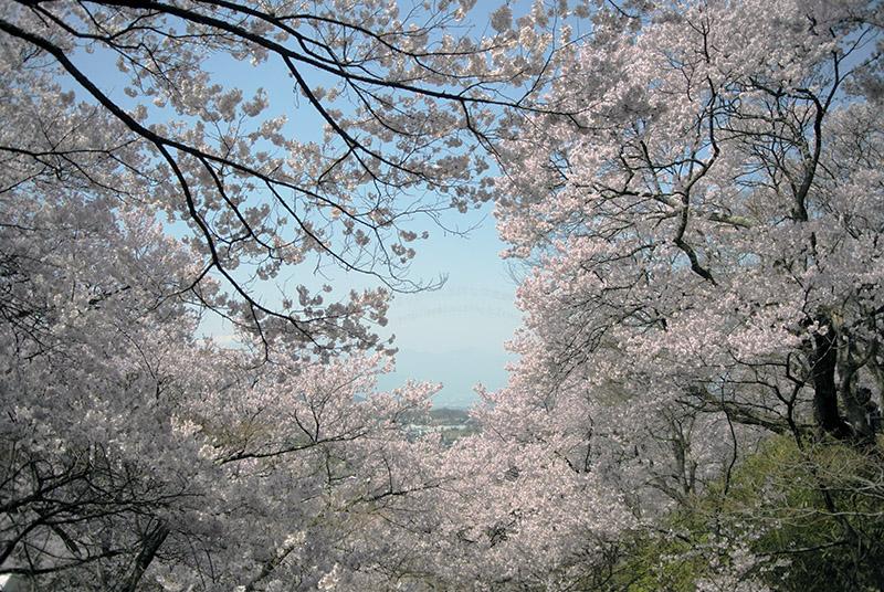 高遠コヒガンと駒ケ岳