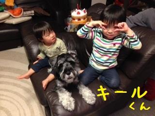 image_15.jpeg