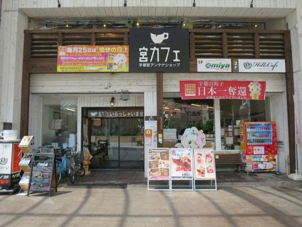 Hills Cafe(ヒルズカフェ