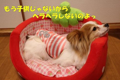IMG_8048.jpg