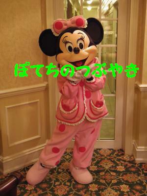 20140208 パジャマミニー