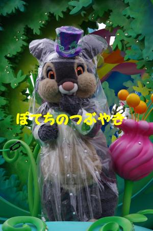 20140505 雨バ (4)