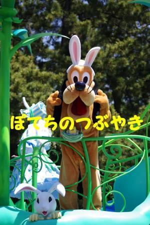 20140511 ヒピホピ (2)