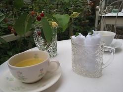 飲み物はグレープフルーツ風味の緑茶