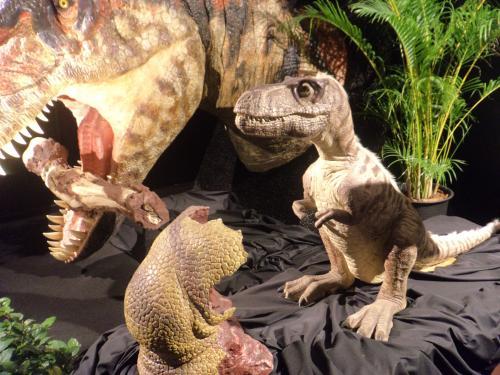ヨコハマ恐竜展・ティラノ赤ちゃん