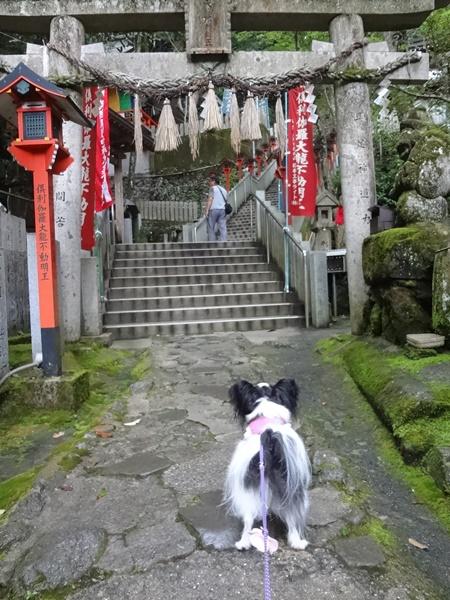犬鳴山七宝瀧寺3