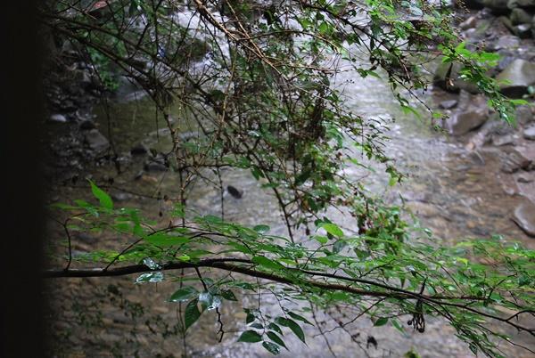 テラスの下は川