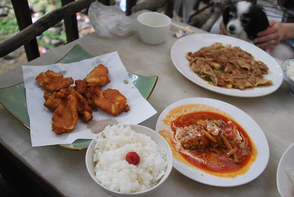 地鶏唐揚げミニハンバーグセット、犬鳴きポーク生姜焼きセット