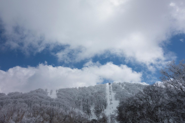 nozawa_0321-19.jpg