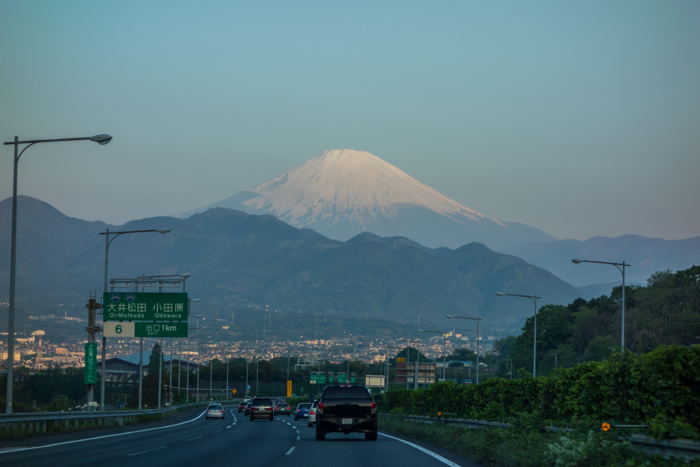 shimoda_2014_0505-3.jpg