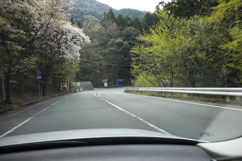 tatado_0413_2013-1.jpg