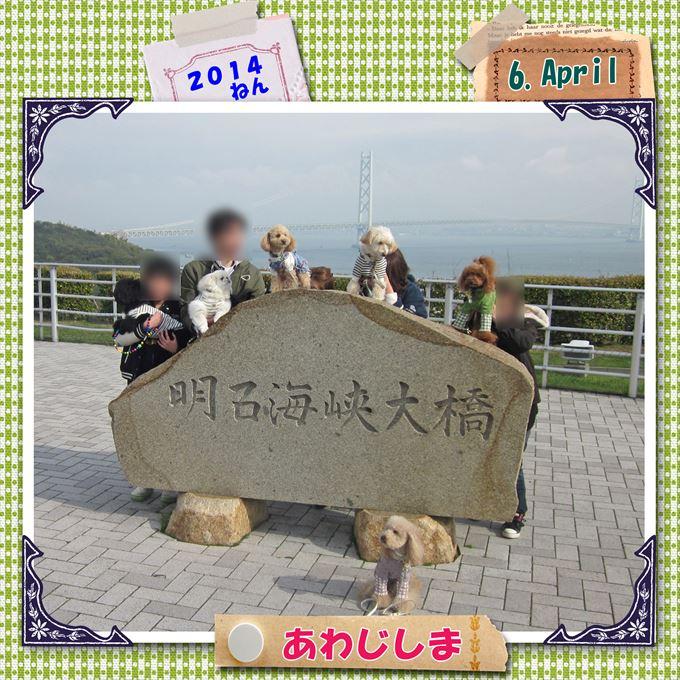 133_20140419194028df8.jpg
