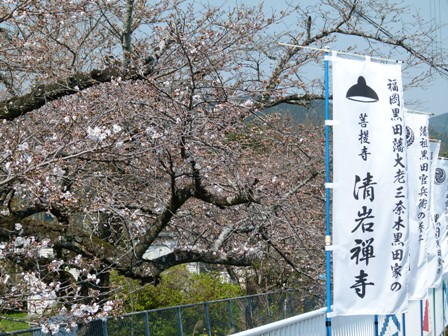 seiganji1.jpg