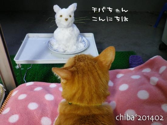 chiba14-02-30.jpg