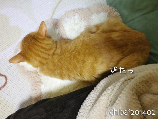 chiba14-02-70.jpg