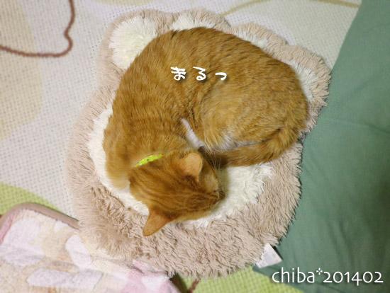 chiba14-02-73.jpg