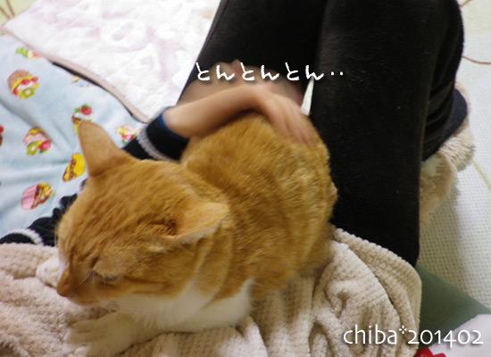 chiba14-02-97.jpg